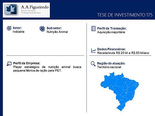 Indústria - Tese de Investimento 175