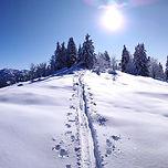 Près des pistes, une montée de 450m de dénivelé pour une initiation au ski de randonnée, en Chartreuse. Magnifique panorama au sommet, avant une descente facile sur la station.