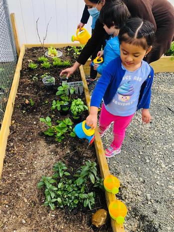 Planting!