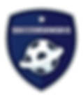 soccer senseis logo 6.png