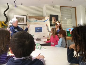 Presentations on Marine Life: Lionfish, Clownfish, Sharks, Oh My!