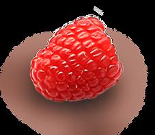 raspberry4.png