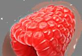 raspberry5.png