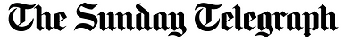 The Sunday Telegraph logo feature You Need A Nutritional Therapist