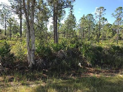 Lot for Sale Osprey Florida