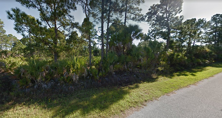 Vacant land for sale Placida Florida