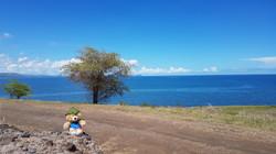 71 Beautiful view Top of Fiji