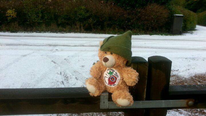 7 Bearnard sees snow for the first time
