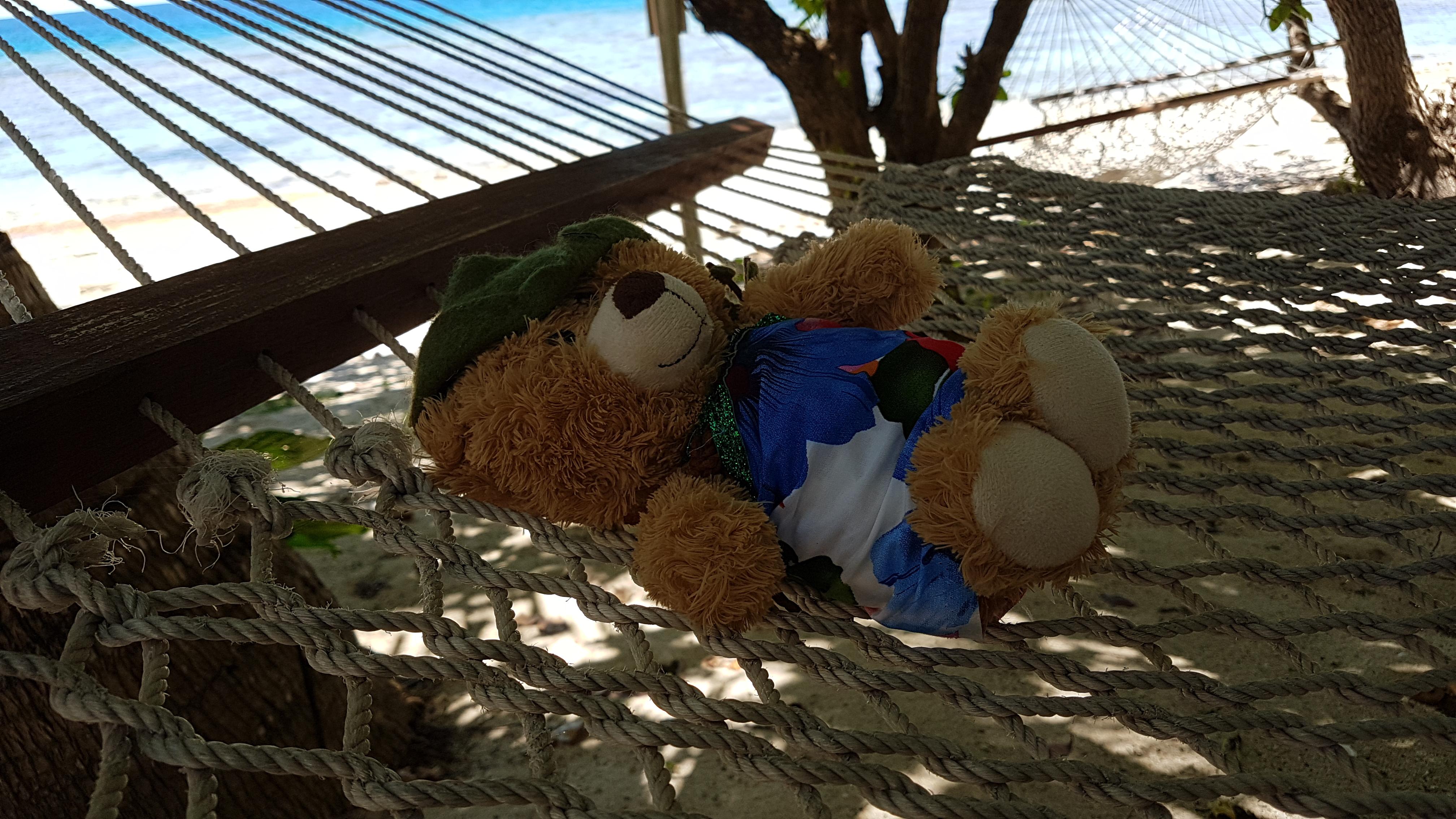 56 Nap time on Bounty Island