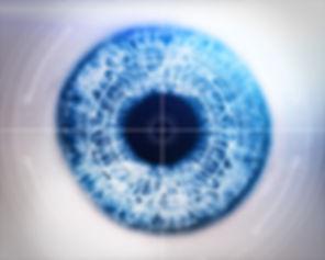 oeil gros Verres unifocaux leica opticien toulouse