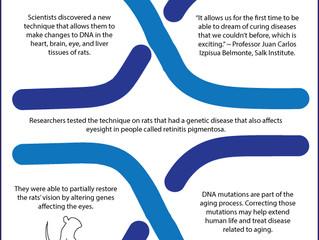 Future of Aging: Fixing Broken Genes