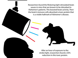 Future of Aging: Strobe Light Therapy for Alzheimer's Disease