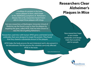 Future of Aging: Researchers Clear Alzheimer's Plaques in Mice