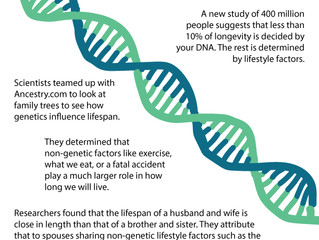 Future of Aging: Genetics Has a Small Impact on Longevity