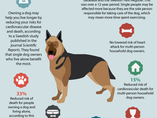 Future of Aging: Dog Owners Live Longer