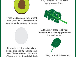 Future of Aging: Food to Protect Your Brain