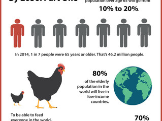 Future of Aging: How the Aging Population Will Affect the World by 2050 Part One