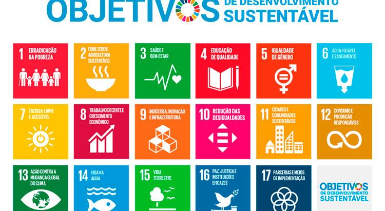 5 passos para se alinhar com as ODS