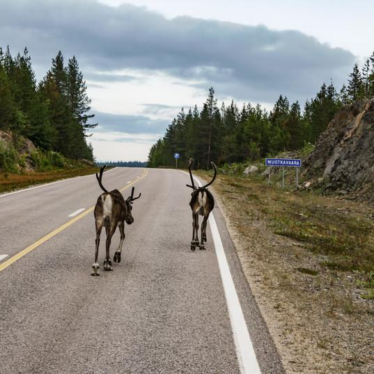 Die Straßen Finnlands