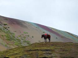 Der Rainbow Mountain Track