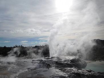 Geysir Rotorua