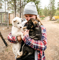 Husky Farm Finnland