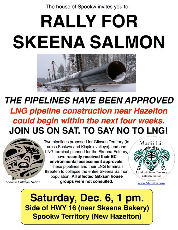 Rally for Skeena Salmon - Dec. 6