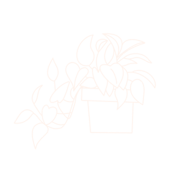 House Plant, Cream.png