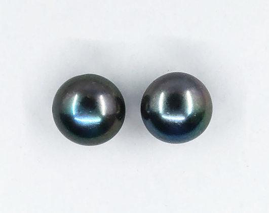 12mm Black fresh water on silver earrings