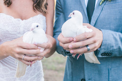 Doves by Blooming Flowers and Gifts