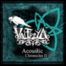 Acoustic Chronicles II