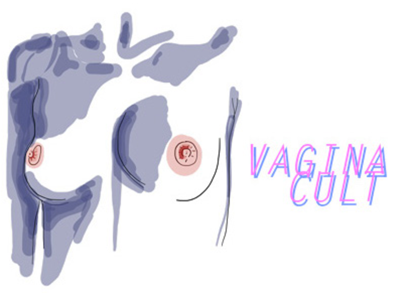 vagina cult, boobs, breast, josephine bunce, josie bunce, interview, howl magazine, new york, nyc, vagina, cult, art, artist, painter, digital, store, shirt