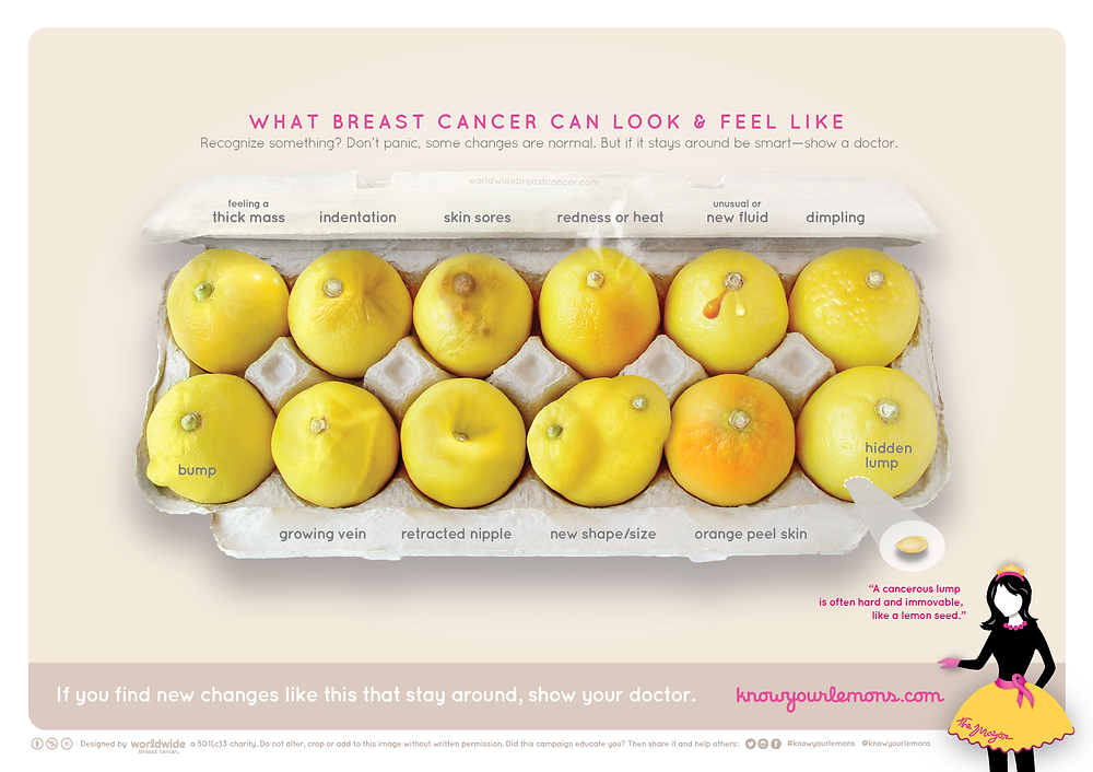 know your lemons, breast cancer, awareness, worldwide breast cancer, non profit organization, howl magazine new york, Erin Smith Chieze