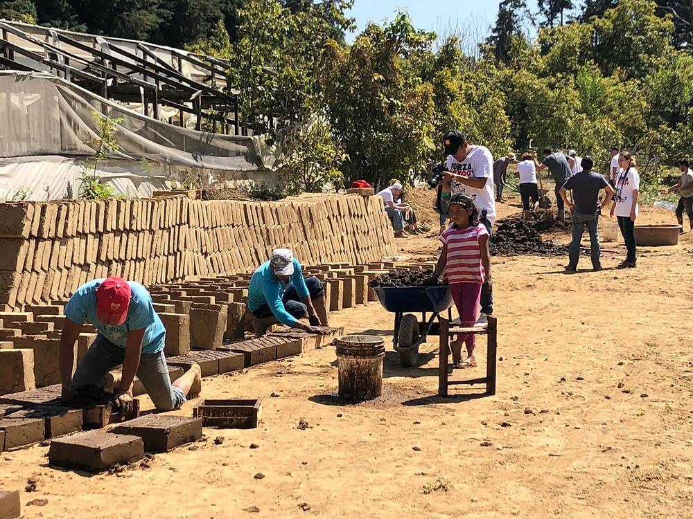 mexico, rebuild mexico, earthquake relief, adobe, AYOK, howl magazine, charity, donate