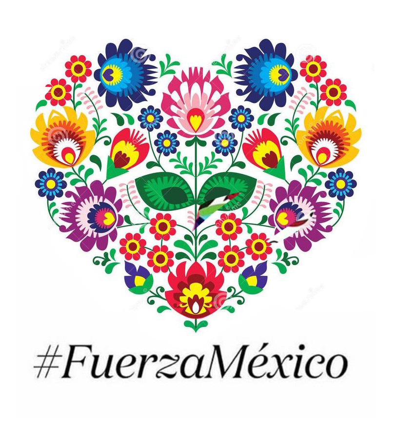 rebuild mexico, mexico sismo, sismo cdmx, earthquake mexico, charity, donation, donate money to mexico, relief fund, victims, help, support, aid, red cross, emergency kit,