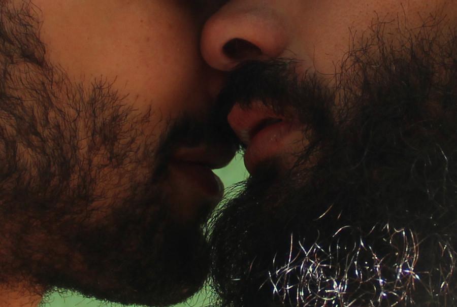 howl magazine, tumblr, gay men, beard, sexuality, sex, orientation