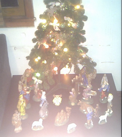 1st of 8 Christmas's at Bosco House