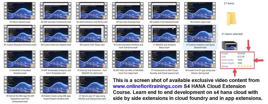 s4hana cloud extension course.png