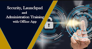 Sap Security and launchpad.jpg