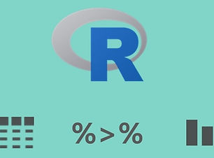 Efficient R Programming with the Tidyver