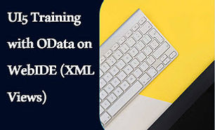 sap ui5 with odata training.jpg