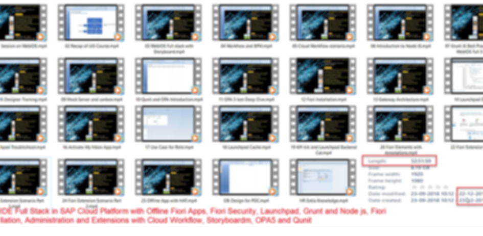 FIori Launhpad and security