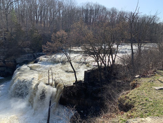 Springtime at the Falls
