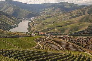 douro-4768654_960_720.jpg