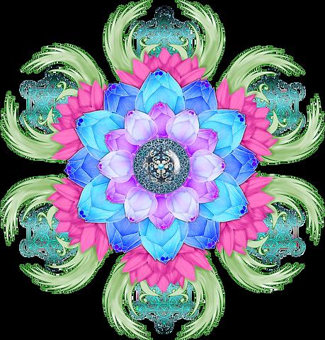 lotus-flower-3650472 - Image par Aquamar