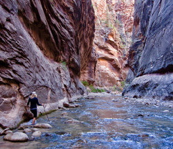 #22 Zion National Park