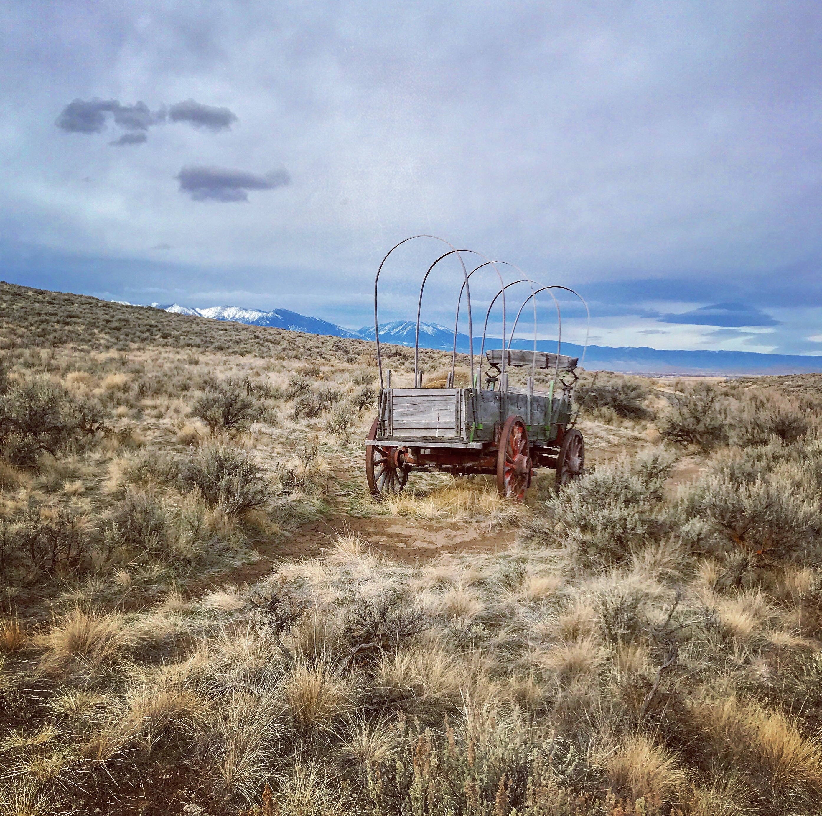 Oregon Trail wagon and ruts