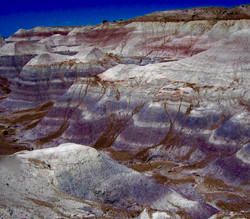 #9 Petrified Forest National Park