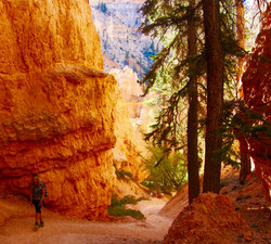#23 Bryce Canyon National Park