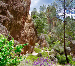 #59 Pinnacles National Park